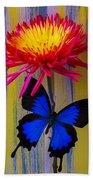 Blue Butterfly On Fire Mum Beach Towel