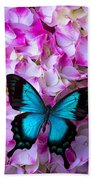 Blue Butterfly On Pink Hydrangea Beach Towel