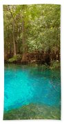 Blue Chill 1 Beach Towel