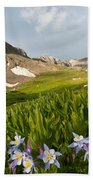 Handie's Peak And Blue Columbine On A Summer Morning Beach Towel by Cascade Colors