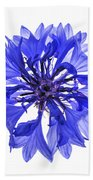 Blue Cornflower Flower Beach Towel