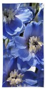 Blue Delphinium 9655 Beach Towel