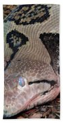 Blue Eyes Snake Beach Towel