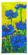 Blue Flowers - Wild Cornflowers In Sunlight  Beach Towel