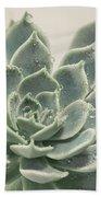 Blue Green Succulent Beach Towel