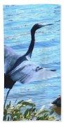 Blue Heron And Pelican Beach Towel