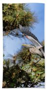 Blue Heron In The Trees Oil Beach Towel