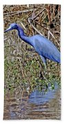 Blue Heron Louisiana Beach Towel