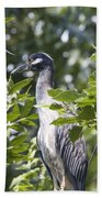 Blue Heron Profile Beach Towel