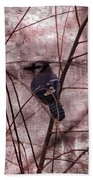 Blue Jay In The Willow Beach Towel