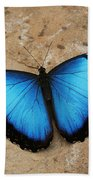 Blue Morpho #2 Beach Towel