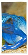 Blue Poison Dart Frog Beach Towel