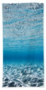 Blue Sea Beach Towel by Sean Davey