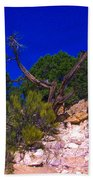 Blue Sky Over The Canyon Beach Towel