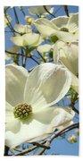 Blue Sky Spring White Dogwood Flowers Art Prints Beach Towel