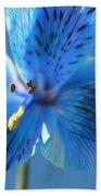 Blue Summer Beach Towel