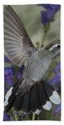 Blue-throated Hummingbird Beach Towel