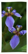 Blue Walking Iris Beach Towel by Carol Groenen