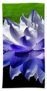Blue Water Lily Reflection Beach Towel