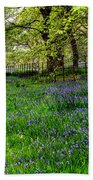 Bluebell Way Beach Towel