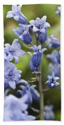 Bluebells 2 Beach Towel