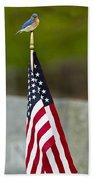 Bluebird Perched On American Flag Beach Towel