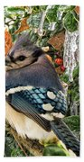 Bluejay And Ice Beach Towel