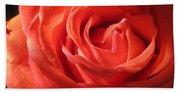Blushing Orange Rose 1 Beach Towel