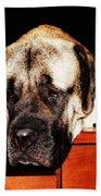 Mastiff Art By Sharon Cummings Beach Sheet