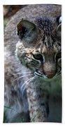 Bobcat 20 Beach Towel