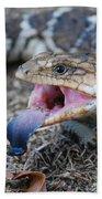 Bobtail Lizard Beach Towel