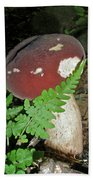Bolete Mushroom And Fern Beach Towel