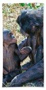 Bonobo Adult Talking To Juvenile Beach Towel