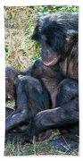 Bonobo Adult Tickeling Juvenile Beach Towel