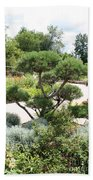 Bonsai In The Park Beach Towel