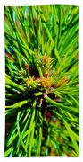 Bonzi Pine Beach Towel