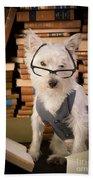 Bookworm Dog Beach Towel
