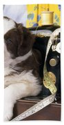 Border Collie Puppy With Sewing Machine Beach Towel