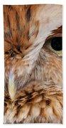Boreal Owl Eyes  Beach Towel