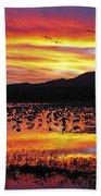 Bosque Sunset II Beach Towel