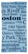 Boston Beach Towel