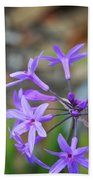 Botanical Art Print - Tiny Dancers By Sharon Cummings Beach Sheet