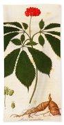 Botany: Ginseng Beach Towel