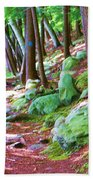 Boulder Forest Beach Towel