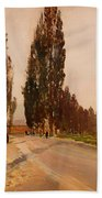 Boulevard Of Poplars Near Plankenberg Beach Towel