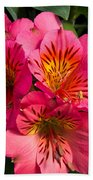Bouquet Of Pink Lily Flowers Beach Towel