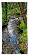 Bow River Near Lake Louise Campground In Banff National Park-ab Beach Towel