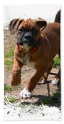 Boxer Puppy 14-1 Beach Towel