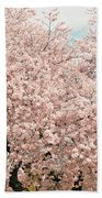 Branch Brook Cherry Blossoms Iv Beach Towel