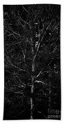 Branch Patterns Beach Towel